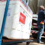 Segunda remessa de CoronaVac será distribuída aos municípios na segunda-feira, dia 1°