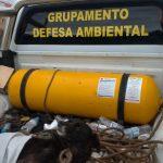 Cão vítima de atropelamento é resgatado pelo Grupamento Ambiental